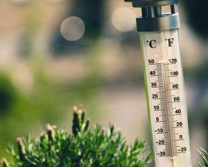 Une image d'un thermomètre un jour où il fait très chaud