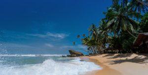 Une image d'une belle plage, nous y allons en vacance depuis...